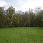 grounds_1