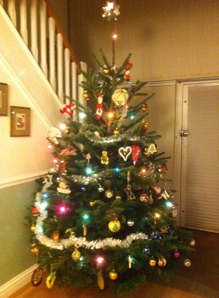 Christmas Trees For Sale – 1st Normandy Scout Group