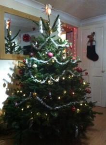 Christmas tree 4 2014